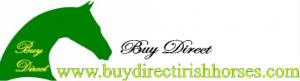 buydirectirishhorses